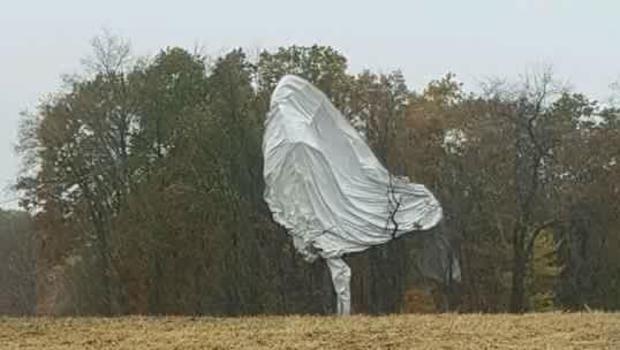 气球树photo.jpg