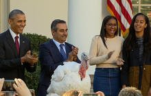 Obama spares turkey from dinner table fate
