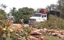 Watch: Tornado damage in Miami area