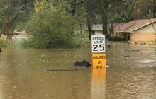 Flash floods rock northwest Louisiana