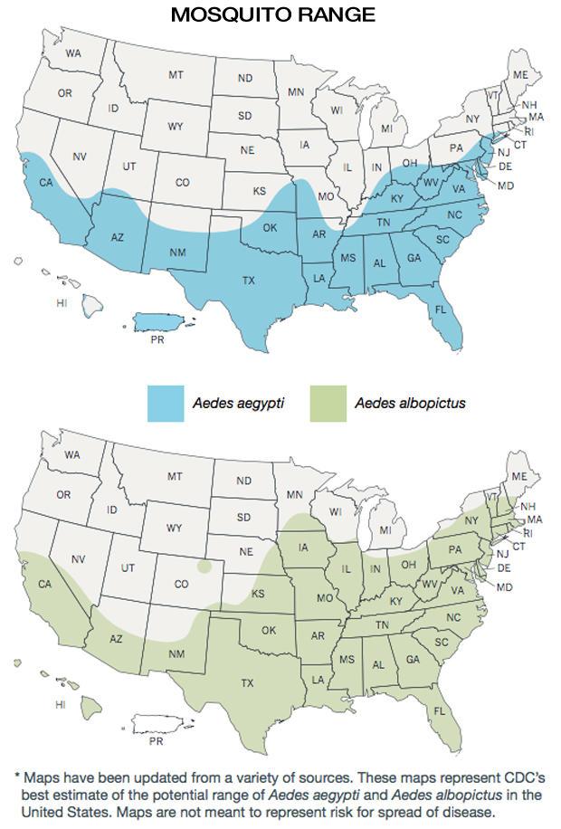 CDC-zikamosquitorange.jpg