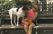 Eye on pets: Spoiling your dog
