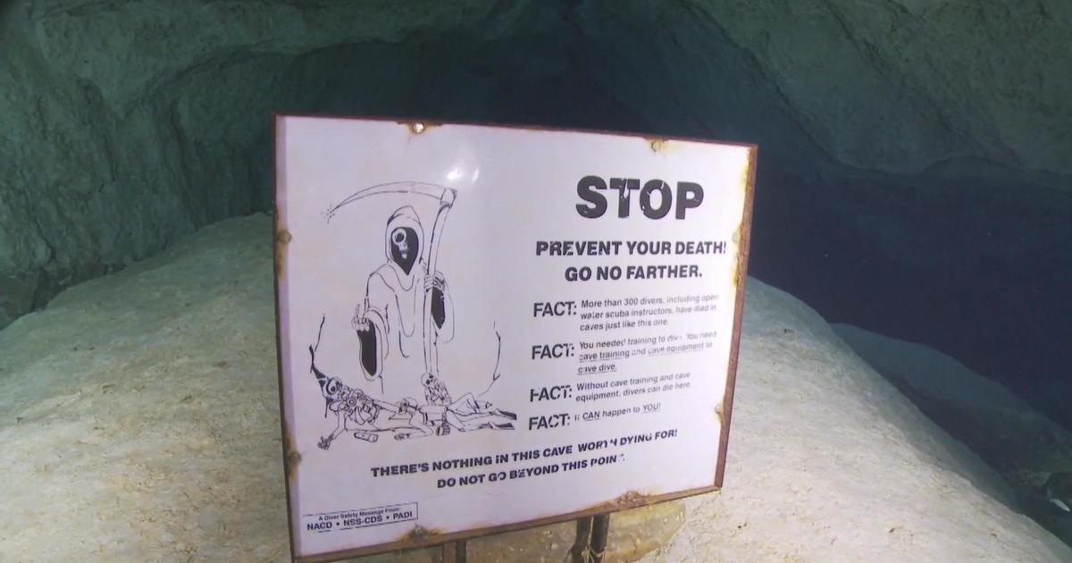 Safety Of Eagle S Nest Popular Fla Diving Site