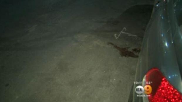 Cyclist carjacks, kills driver in apparent road-rage attack in Van Nuys