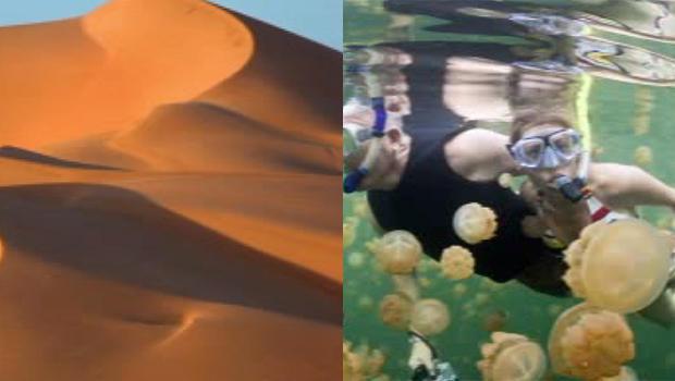 阿特拉斯 - 暗箱唱歌 - 沙丘 - 卡塔尔 - 水母湖帕劳-620.jpg