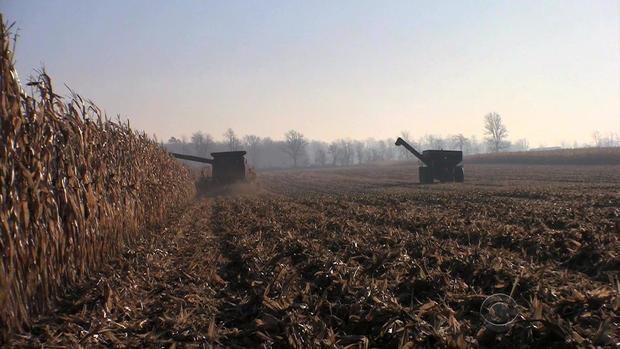 0223-EN-begnaud-farms3.jpg