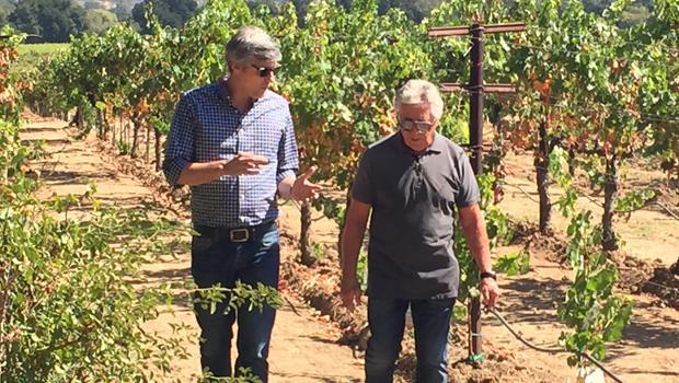 mario-andretti-mo-rocca-vineyard-620.jpg