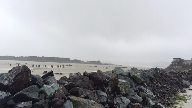Girl dies on Oregon coast after log rolls on top of her