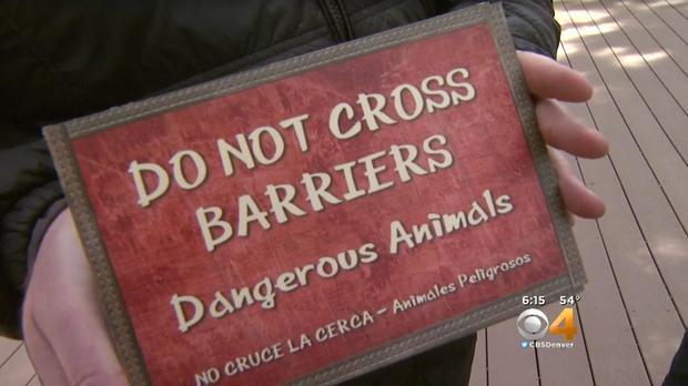 """在动物园说一名男子吹嘘要触摸睡觉的老虎后,在丹佛动物园的""""边缘""""展览上安装了新的警告标志。"""