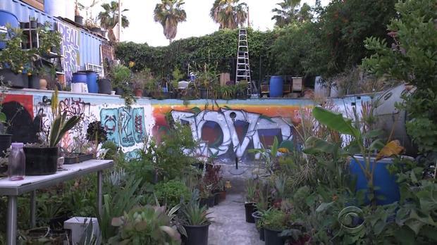170409-en-villarreal-gangsta-gardener03.jpg