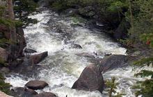 Nature: Colorado Rockies