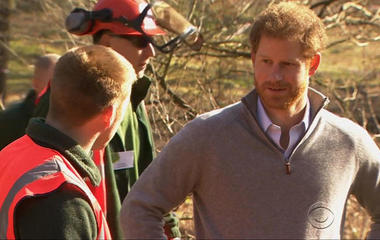 Prince Harry reveals how he dealt with pain of mother's death