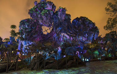 Stars revisit Disney's World of Avatar forward of opening