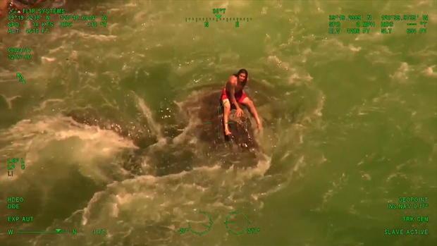 绞线swimmer.jpg