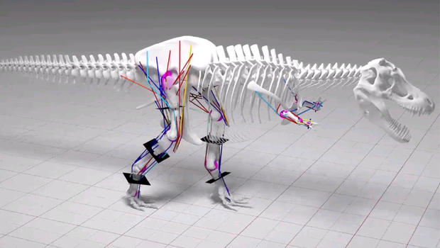 Rex Couldn't Run, Scientists Determine