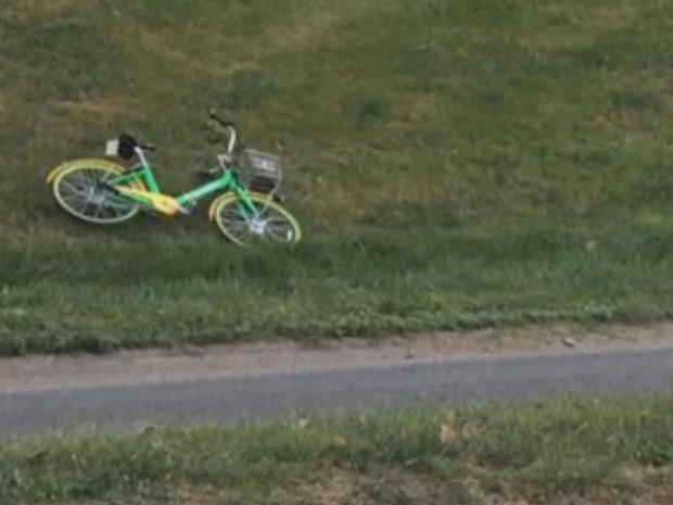 自行车litter.jpg