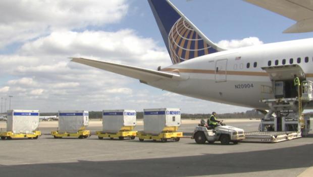 更轻的飞机 - 美国 - 货物集装箱-620.jpg