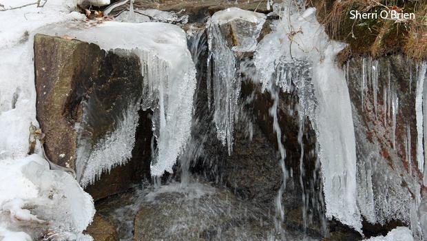 冰和水,雪莉 - 奥布莱恩-620.jpg
