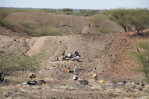 view-of-excavation1-copy.jpg