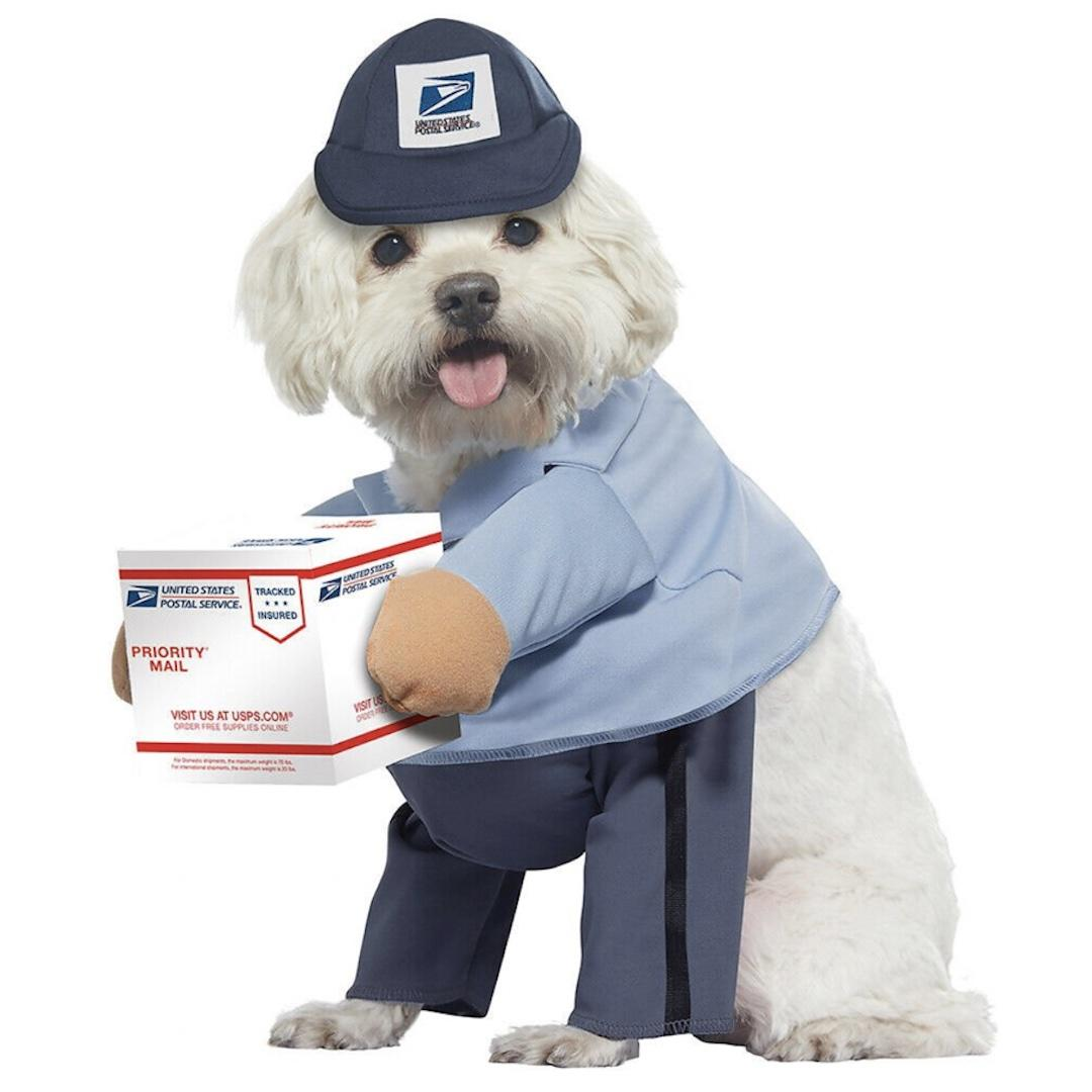California Costumes USPS Delivery Driver Dog Costume