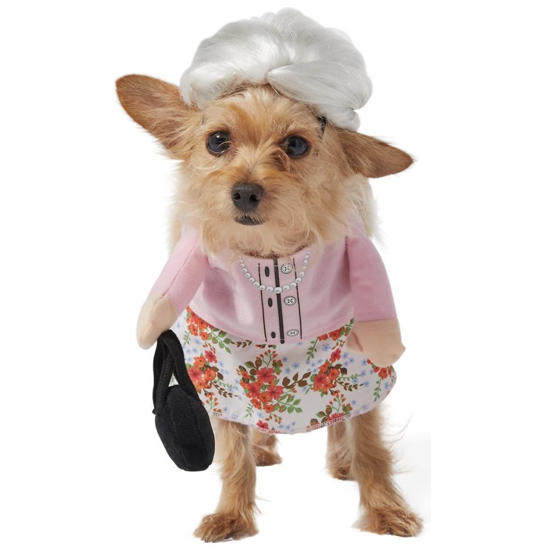 Frisco Front Walking Granny Dog Costume