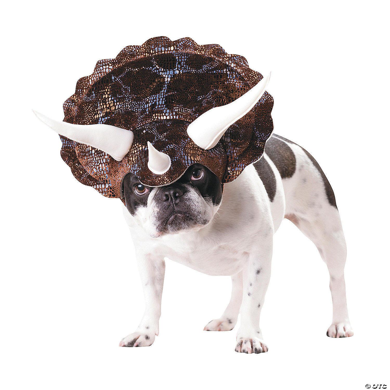 Animal Planet Triceratops Dog Costume