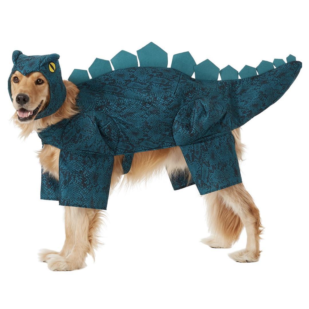 Frisco Stegosaurus Dinosaur Dog Costume