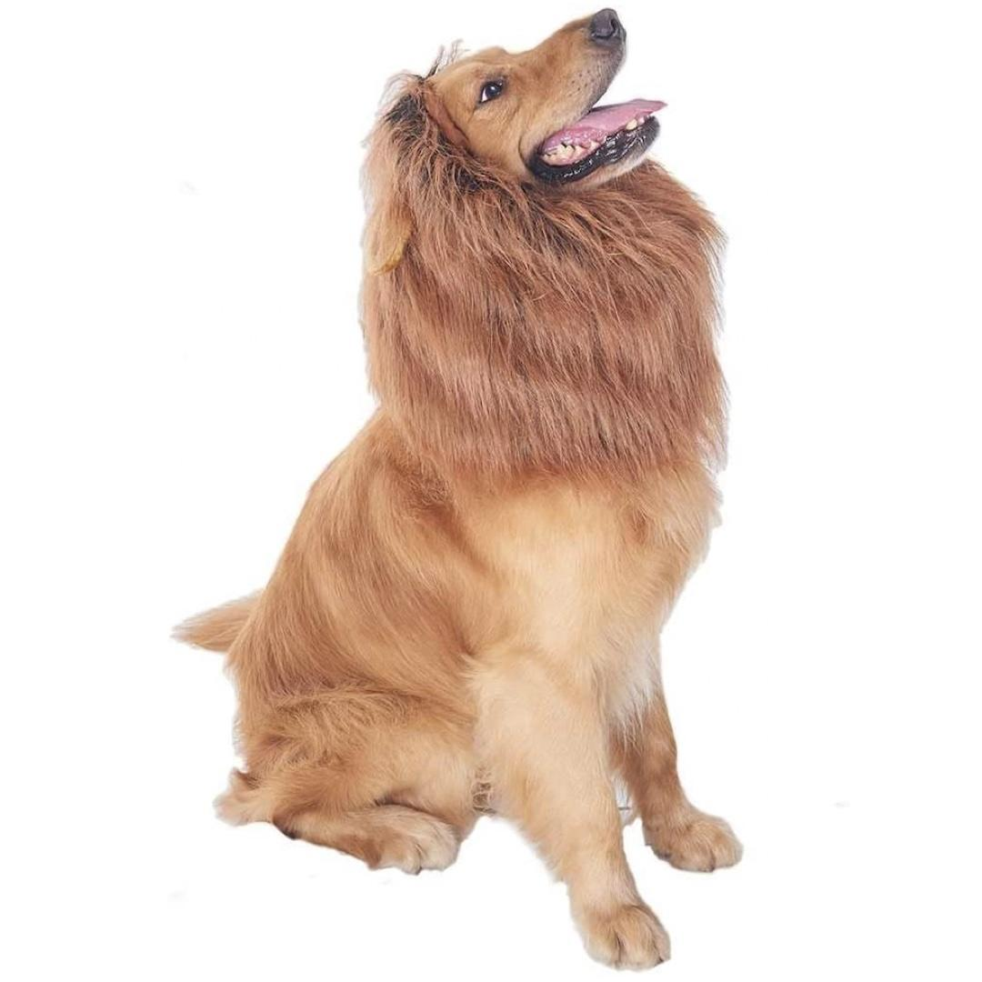 Lulu Home Lion Mane for Dogs
