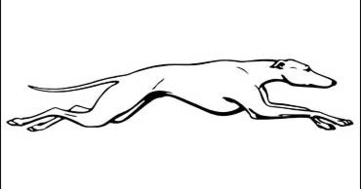 Greyhound 260 Stops 150 Jobs Out Cbs News