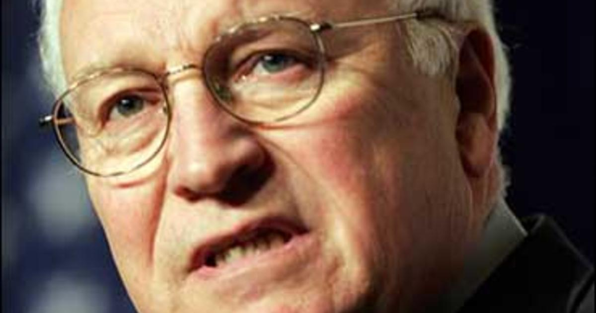 Dick cheney accident with gun — photo 1