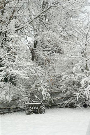 The Blizzard Of '06