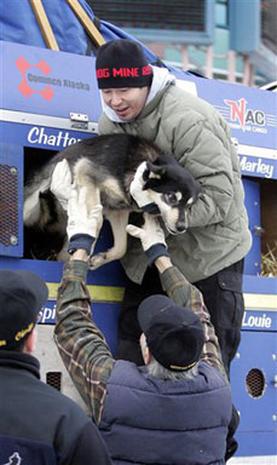 Iditarod: The Last Great Race