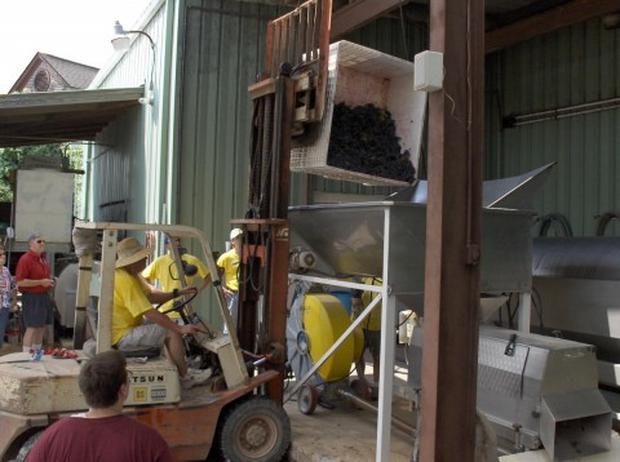 Jack's Journal:  Texas Wine