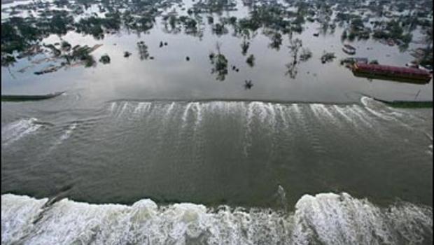 Hurricane Olesya Devastates Local Economy Essay Sample