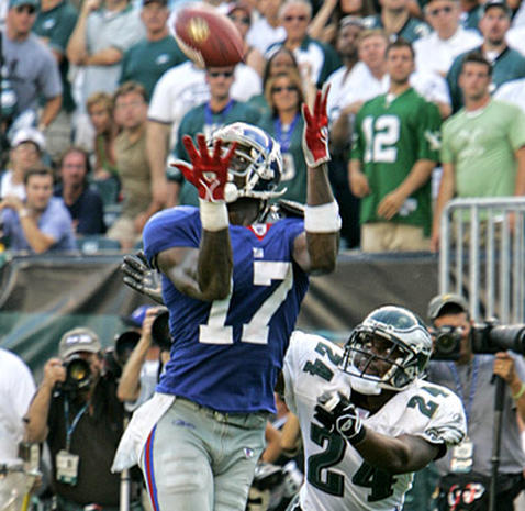 2006 NFL Season