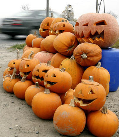 Pumpkins On Parade