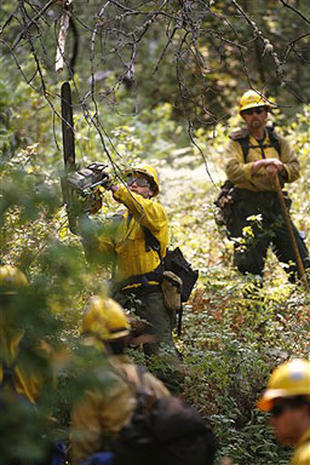 Fires Char California