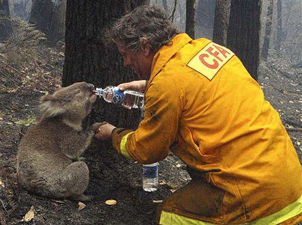Deadly Australia Wildfires