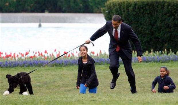 President Barack Obama is almost jerked off his feet as he shows off their new dog Bo, Tuesday, April 14, 2009, a 6-month-old Portuguese water dog with his daughters Malia, left, and Sasha Obama, right, on the South Lawn of the White House in Washington,