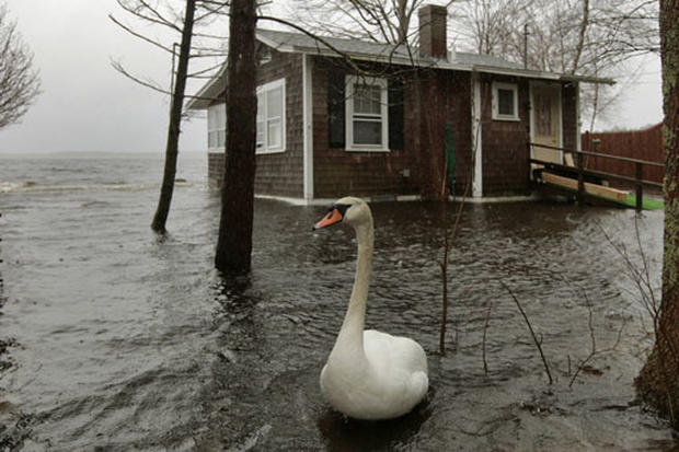 Northeast Flood Woes
