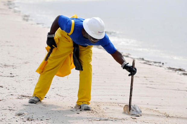 Gulf Oil Spill Threatens Wildlife