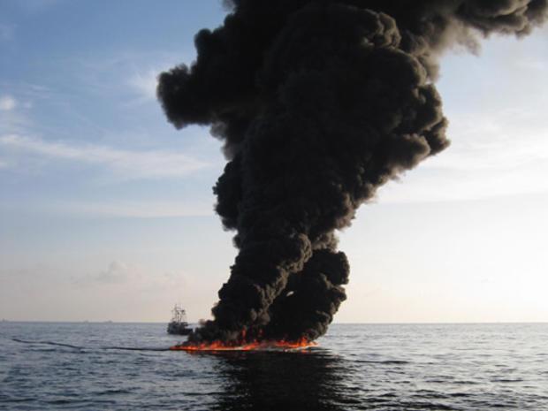 Gulf_Oil_crop_7.jpg