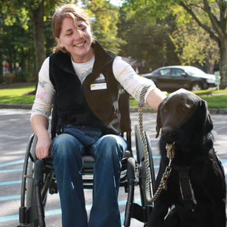 Puppies Bred to Help the Disabled