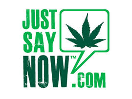 Just Say Now hopes to legalize marijuana. Facebook isn't going to help.
