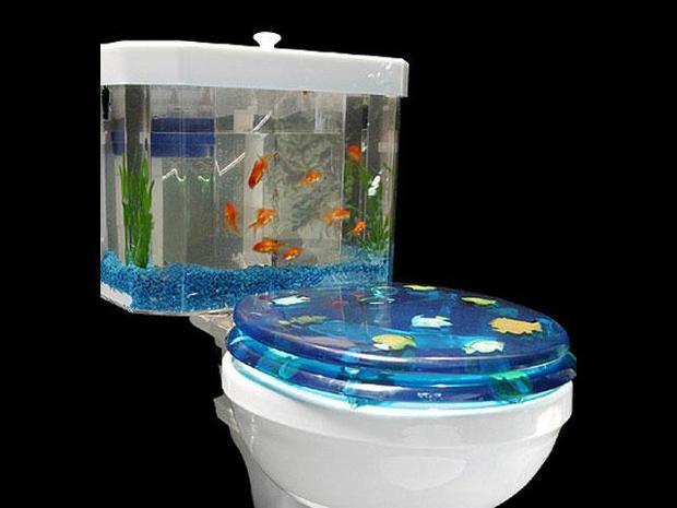 kittyworld-fishbowl.jpg
