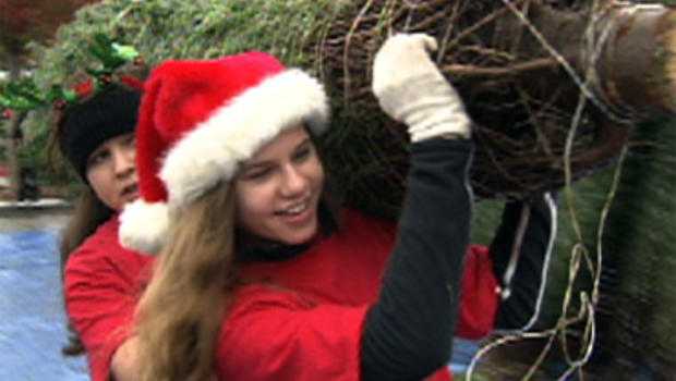The Garrick family gives away 500 Christmas trees in Redwood City, Calif.