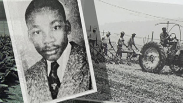 A teenage Martin Luther King, Jr. spent two summers working the tobacco fields in Connecticut.