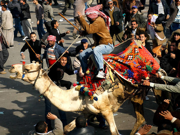 Cairo protesters clash with a camel rider