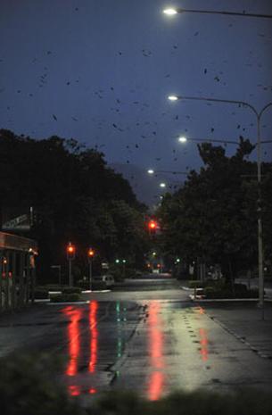 Cyclone Yasi Batters Australia