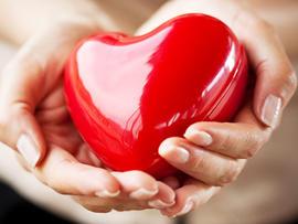 heart in hands, stock, 4x3